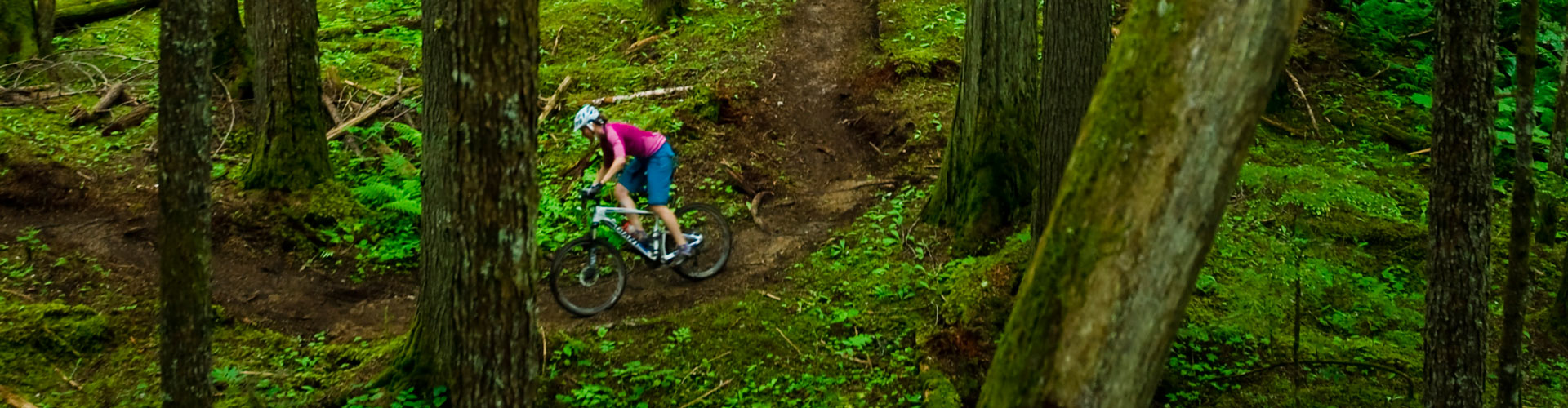 Mountain biker riding singletrack in British Columbia rainforest